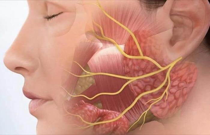 Những điều cần biết về chứng viêm tuyến nước bọt